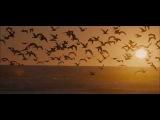 Eddie Vedder - Hard Sun