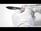 Victorinox SPARTAN UKRAINE 1.3603.7R5 - обзор ножей Викторинокс