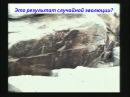 Почему эволюция - глупость - Кент Ховинд / Kent Hovind