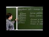 Образование слов в русском языке с помощью приставки