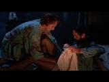 Kiss of the Spider Woman // Поцелуй женщины-паука (1985) Эктор Бабенко