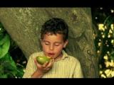 Непоседа  Menino Maluquinho O Filme  The Nutty Boy A Film (Бразилия, 1995)