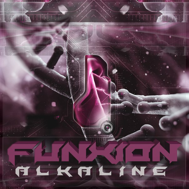 Funxion - Alkaline (Original Mix)
