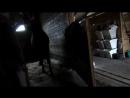 Яна, Морозовка и беспощадный конь Филя