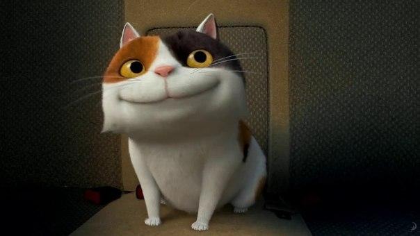 Кот хрюня