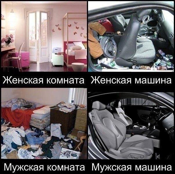 http://cs625327.vk.me/v625327741/11598/MvTlobOpFcM.jpg