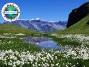 Швейцарские Альпы Вокруг света на воздушном шаре Вокруг Света