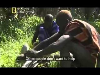 Секс в дикой Африке Жизнь племени Водаабе Документальный фильм