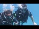 Egypt, Sharm El Sheikh, diving Red sea, Ras Mohammed. Дайвинг Египет, Шарм Ель Шейх, Рас-Мохаммед