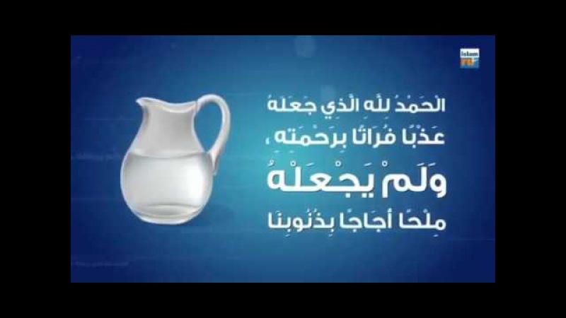 Питье воды согласно сунне Пророка Мухаммада ﷺ [Шейх Мухаммад ас-Сакаф]