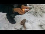 Как взорвать пластиковую бутылку с помощью аммиачной селитры (взрывы)