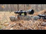 Пневматическая винтовка HUNTER 440 тест