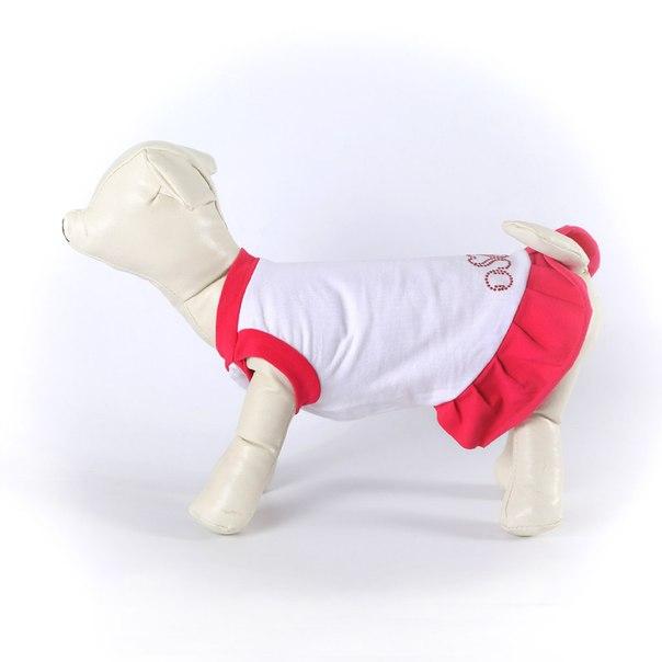 OSSO Fashion - лучшие товары для животных,дрессировки,спорта - Страница 2 TYZaXqTMcqE