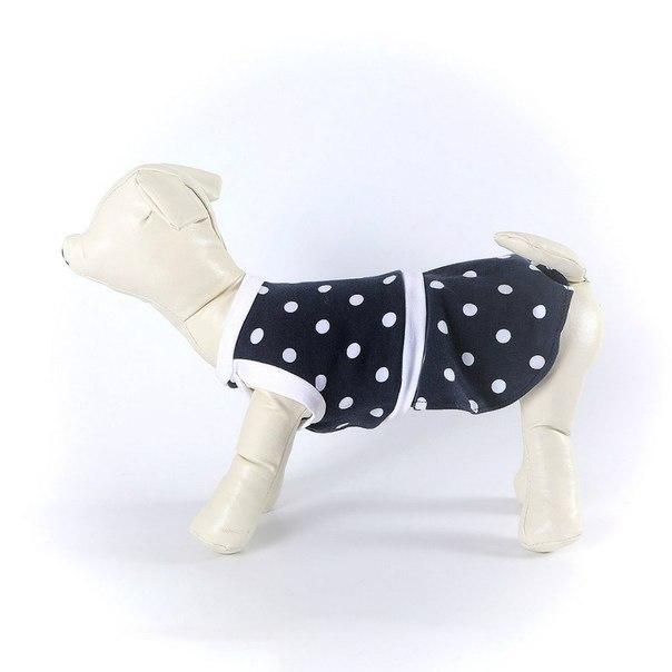OSSO Fashion - лучшие товары для животных,дрессировки,спорта - Страница 2 QJlHp3GvJa0