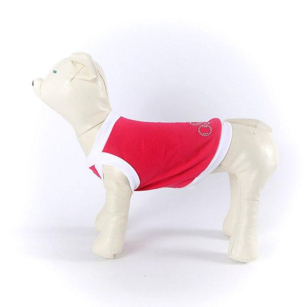 OSSO Fashion - лучшие товары для животных,дрессировки,спорта - Страница 2 KqpSjCKjZXc