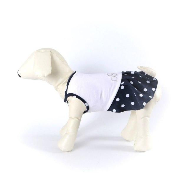 OSSO Fashion - лучшие товары для животных,дрессировки,спорта - Страница 2 E6GvwYeHof0