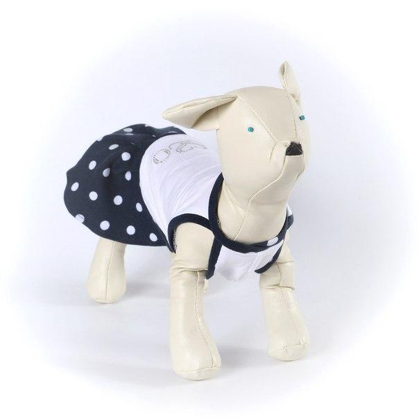 OSSO Fashion - лучшие товары для животных,дрессировки,спорта - Страница 2 2rfi4kzTkEQ