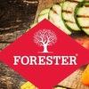 Forester. Группа любителей шашлыков и гриля