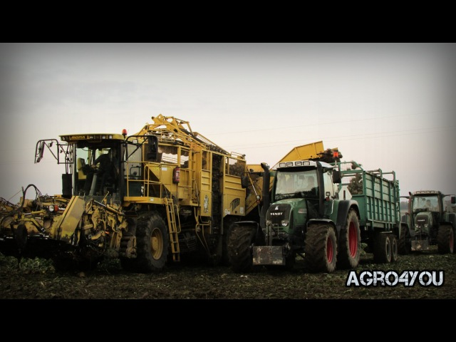 Kampania buraczana 2015 [GoPro4] Ropa Tiger 2x Fendt Vario 716 414 Jcb Sugar beet Harvest 2015