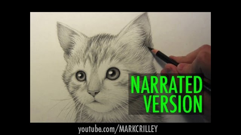 How to Draw a Kitten: Narrated Step by Step