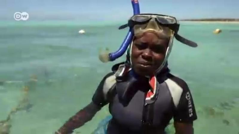 DW_Sansibars nachhaltige Meereswirtschaft