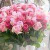 Elite rose оптово-розничный салон цветов