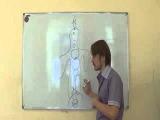 2 урок из 7  Видеть энергию   А  Панфилов   экстрасенсорика, магия, ясновидение