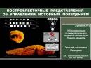 Д А Сахаров Долгое прощание с рефлекторной доктриной