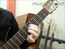 Как настроить гитару по слуху новичку?