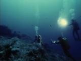 В поисках Атлантиды. Подводная одиссея команды Кусто (часть 2)