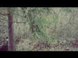 УКРОП - ГАЙДАМАКИ Бодя Кутєпов і Олександр Ткачук _ HAYDAMAKY - UKROP