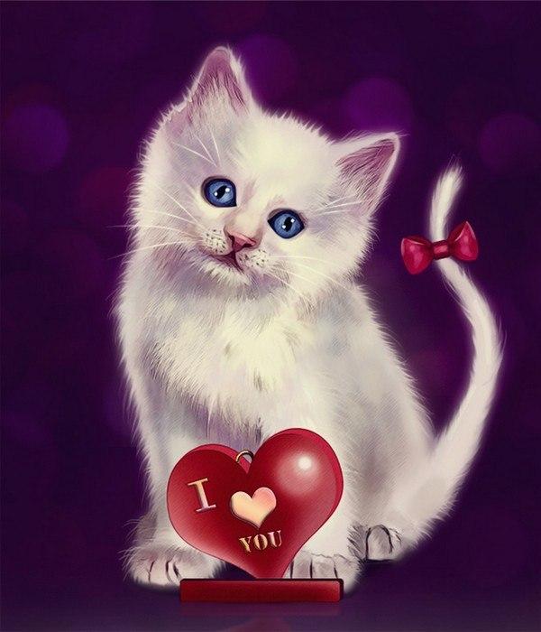 Открытки люблю тебя с кошками, скоро