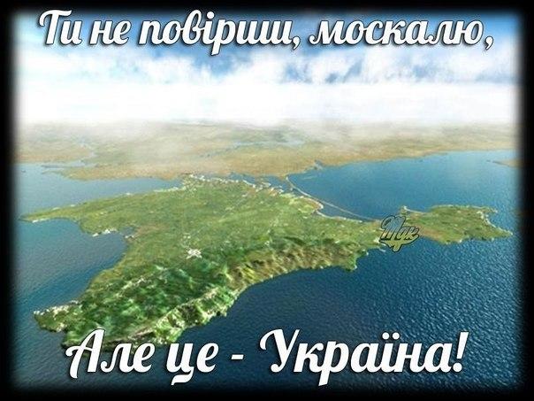 """Украина получает по реверсу около 30 млн куб. м газа в сутки, - """"Нафтогаз"""" - Цензор.НЕТ 3674"""
