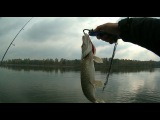 Осенняя ловля щуки и окуня - удачная рыбалка