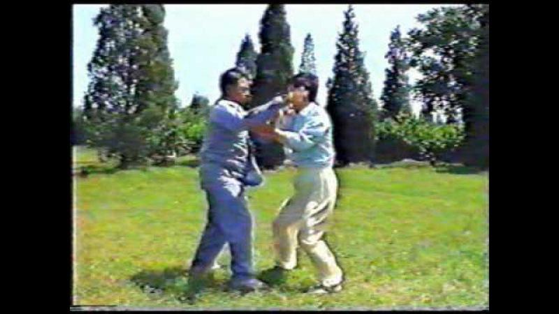 Chen Hunyuan Tai Chi Pushing Hands Feng Zhiqiang