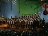 Большой детский хор Всесоюзного радио и Центрального телевидения (Солист- Виталий Николаев) - Беловежская Пуща