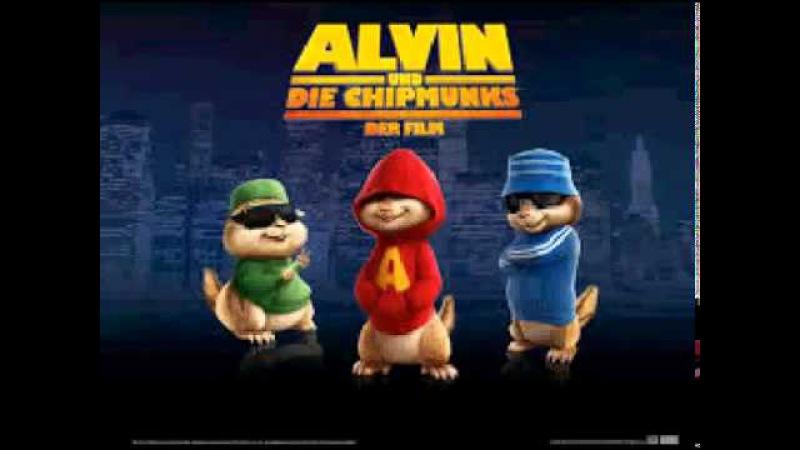 Alvin Ve Sincaplar Bas Gaza