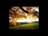 ВАДИМ КОЗИН   Осень прозрачное утро !!!
