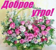 Доброе утро)
