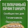 TEPLICHNIKI.RU | Выращивание огурцов и томатов