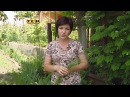 Борьба с сорняками - 6 соток