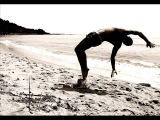 Al Di Meola &amp Airto Moreira - Capoeira (Soaring Through A Dream)