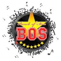"""Логотип Project """"Bunch Of Stars"""" <<B.O.S*>>"""