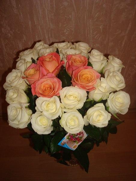 Фото подаренные цветы
