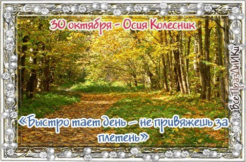 http://cs625417.vk.me/v625417618/45df0/DTvVv_pMbMw.jpg