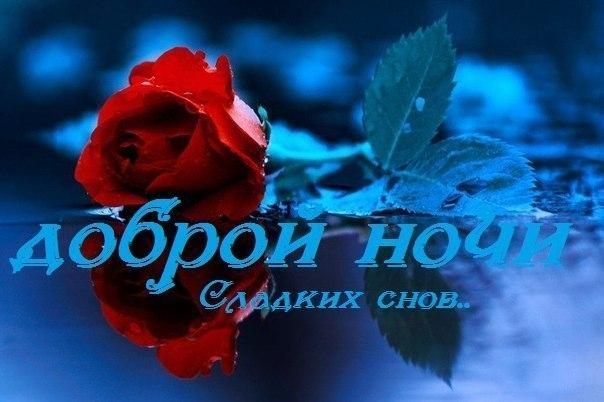 http://cs625417.vk.me/v625417618/9047/Dr_G6oxaklI.jpg