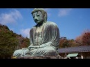 Kamakura Daibutsu Great Buddha 大仏 Kamakura Japan