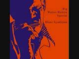 Big Walter Horton &amp Carey Bell - Lovin' My Baby