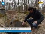 ТВ100, 27 апреля 2015 г.: Краеведы обнаружили в Выборге могилу русского офицера, погибшего на дуэли в 1914 году
