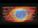 МЫ В ВЕЧНОСТИ (часть четвертая) - Видео Dailymotion